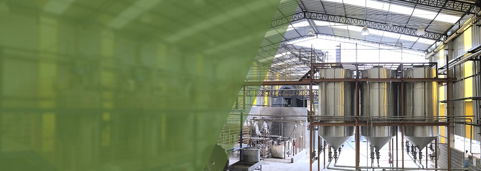 Capacidade instalada <br /> de 36.000 toneladas de <br /> Goma Resina por ano<br />